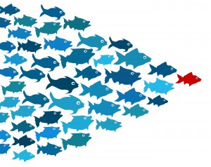 bigstock-fishes-in-group-leadership-con-43450855